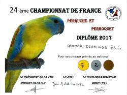 4 diplome patrice ffo 2017