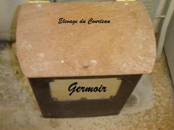 germoir-3.jpg